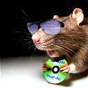 Злая Мышь Новикофф