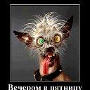 Алекс - Юран Apклин
