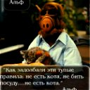 Мастер Поцелуев