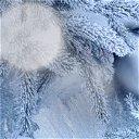 Lady Winter ❄