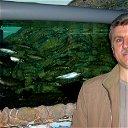 Константин Ковригин