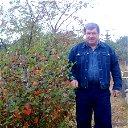Юрий Вережников