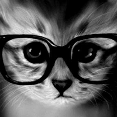 Умная Глупая Кошка