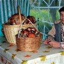 Максим Заводсков